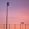Field Lights
