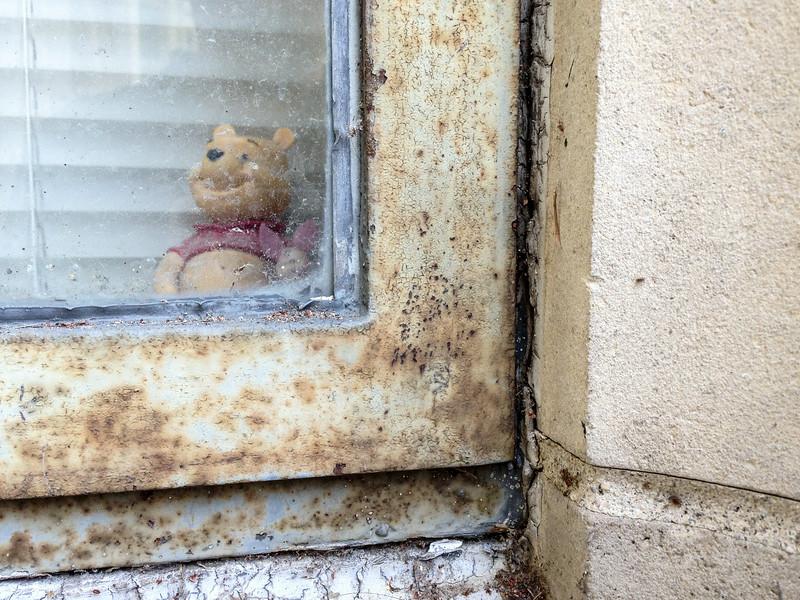 Window Pooh