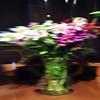 Watery Bouquet