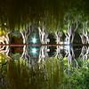 Still Water Trees