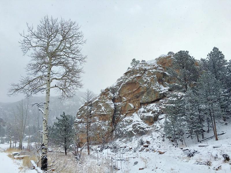 Aspen, Rocks, Snow