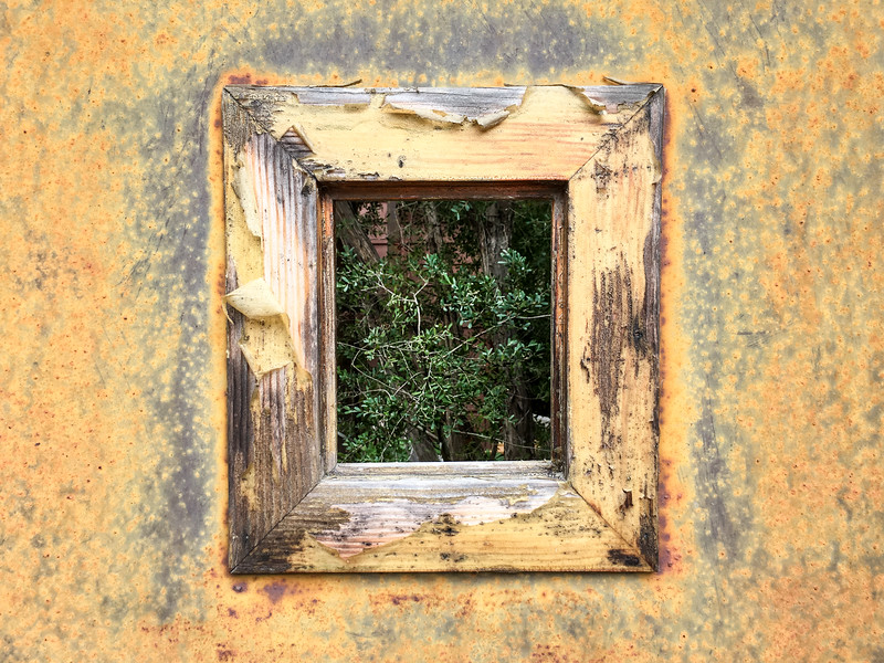 Rusted Window