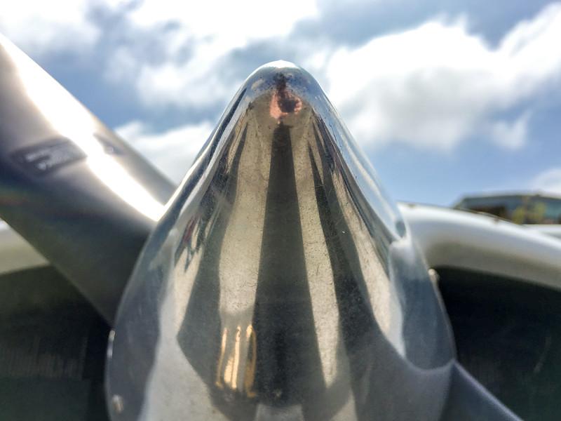 Shiny Nose