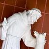 Francis & Wolf