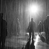 Rain Disciples