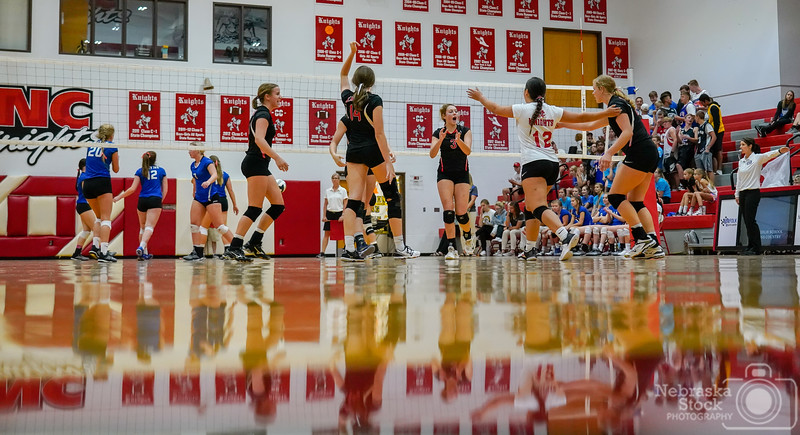 9-18-2018<br /> <br /> 261/365<br /> <br /> The Norfolk Catholic Lady Knights celebrate a point against Wayne in their volleyball match Tuesday night. Wayne ended up sweeping the Knights in three sets. <br /> <br /> Photo taken with a Sony A7rIII with a Sony FE 24-105<br /> <br /> ISO 5000<br /> <br /> 1/800th at F4<br /> <br /> Picture No. 159844