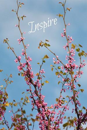 April 24, 2012 Inspire...