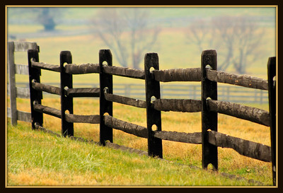 """December 8, 2013  """"V"""" is for """"Velvety"""" Brown Fences in the """"Valley"""" I posted this and later realized it was """"V"""" day so this is pretty much a copout. :)"""
