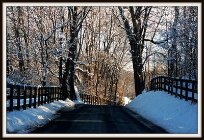 December 14, 2013  Over the River and Through the Woods to Grandmothers House we go...