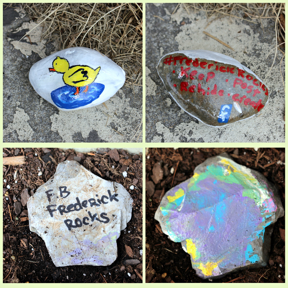 Frederick Rocks