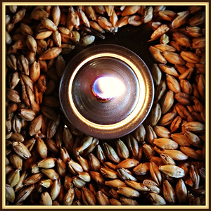Barley & Hops