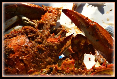 Steamed Crabs!