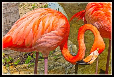 "Fotoeffects Alphabet Challenge ~ ""F"" is for Flamingo"