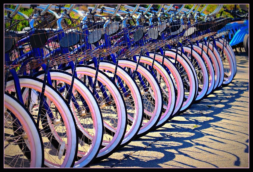 Bike, Bike & more Bikes!