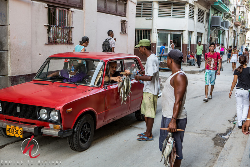 "<font size=""4""><b><font color=""Yellow"">Post 1083 48/365  2/17/2014 - Roadside service…Cuban style  These young men were selling their freshly caught fish right on the street one afternoon in Havana. It was interesting to see a car stop and the driver consider his purchase right there in the street.   It is late and I almost didn't have a picture to post tonight. Still have so many to sort through. It feels like there is spontaneous generation of images files sometimes.   Thank you all for your comments on my Alphabet Challenge ""E"".. i posted out of order earlier so I just hope I don't miss any letters by the time we are done!   Have a good night!"