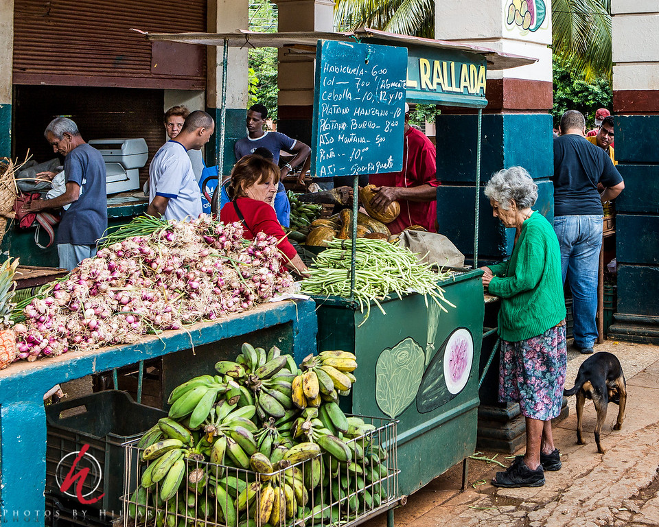 """<font size=""""4""""><b><font color=""""Yellow"""">Daily Post 1142-  108/365   4/18/2014 - Neighborhood Produce Market…Vedado neighborhood in Havana, Cuba  This was a bustling neighborhood market. I took this picture on my first trip November 2012….truly a hotspot of activity in the late morning hours."""