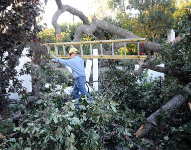 DWP workers try to get power restored to the neighborhood after a 100 year old oak tree fell on to the 23228 blk of Canzonet St. No one was hurt and DWP will be working for hours to get power restored and clear the tree away. Woodland Hills CA. Aug 23,2010. Photo by Gene Blevins/LA DailyNews