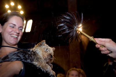 NETHERLANDS ANIMAL BLESSING