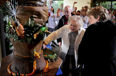 Betty White, seen standing between Zoo Director John Lewis and GLAZA President Connie Morgan, takeas a look at the cake baked in her honor. The Greater Los Angeles Zoo Association (GLAZA) fetes its Chairman BETTY WHITE on the occasion of her 90th Birthday at a private event for LA Zoo Keepers and GLAZA Trustees with a life-size birthday cake created by the presigious Le Cordon Bleu College of Culinary Arts in Hollywood.  Standing 5' tall, the chocolate blackout cake with valrhona ganache, lamill coffee and valrhona crunchy pearls contains 90 lbs. sugar, 50 lbs. flour, 50 lbs. butter, 470 eggs and 100 cups of coffee, among other ingredients.  Los Angeles CA 1/21/2012(John McCoy/Staff Photographer)