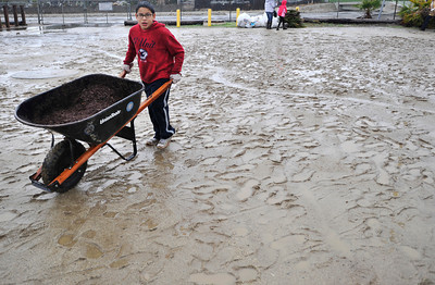 Justin Mazariego, 11, pushes a wheelbarrow full of mulch through the mud. Students, elected officials, and community members worked together to improve a blighted pedestrian bridge. The Haddon Avenue pedestrian bridge spans the Pacoima Wash and links San Fernando High School to the rest of Pacoima. Over 200 students and community residents use this bridge every day. The bridge currently suffers from sever blight and neglect with graffiti, peeling paint covering its surfaces and trash littering the surrounding area. Pacoima, CA.11-20-2010. (John McCoy/staff photographer)