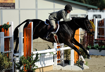 Sue Lightner competes during the first day of the $50,000 Los Angeles NationalÊGrand Prix Wednesday, November 16, 2011 at theÊLos Angeles Equestrian Center in Burbank, CA. The event concludes on Saturday top riders competing in show jumping in the Equidome atÊthe Equestrian Center (Hans Gutknecht/Staff Photographer)