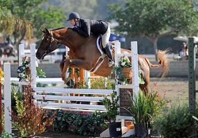 Tanya Levorhick competes during the first day of the $50,000 Los Angeles NationalÊGrand Prix Wednesday, November 16, 2011 at theÊLos Angeles Equestrian Center in Burbank, CA. The event concludes on Saturday top riders competing in show jumping in the Equidome atÊthe Equestrian Center (Hans Gutknecht/Staff Photographer)