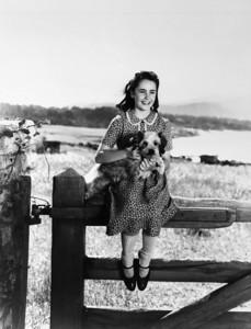 Elizabeth Taylor National Velvet 1944