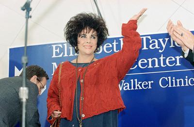 Liz Taylor 1993