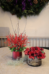 (l-r) Tall Ilex Berries and Ruby Amaryllis make pretty holiday center pieces. Mark Held has designed a variety of floral arrangements for the holidays at Mark's Garden, located on Ventura Blvd. in Sherman Oaks, CA 12/08/2011(John McCoy/Staff Photographer)