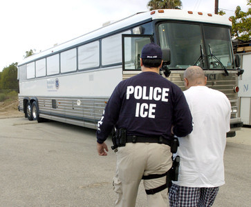 An U.S. Immigration and Customs Enforcement agent takes an alledged gang member who is arrested for immigration and criminal violations in the San Fernando Valley early Friday morning, Oct.5, 2007, to a Homeland Security bus which was at the National Guard Armory in Van Nuys, Ca.  (Tina Burch/Staff Photogrpaher)
