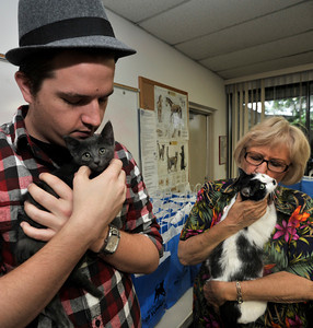 """Scott Farris snuggles up with a kitten while Virginia Duffy gives some love to the mother cat that she has been in her foster care. People got upclose and personal looks at cats in the Burbank Animal Shelter during the Cats Days of Summer, hosted by Found Animals Foundation. The one-day Adopta-thon that took place simultaneously at 16 LA animal shelters. Reduced adoption fees on all kittens, cats, puppies, dogs and other pets during """"kitten season. Burbank,, CA 6-17-2011. (John McCoy/Staff Photographer)"""