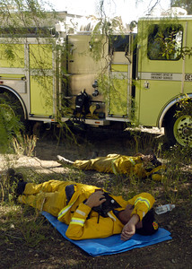 California Department of Forestry firemen take a break under a pepper tree along Rambla Pacifico Road in Malibu, Ca.  (Tina Burch/Staff Photographer)