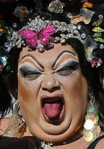 APTOPIX  Brazil Gay Parade