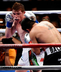 (in wht trunks)) Saul Alvarez goes 6 rounds wtih Carlos Baldomir, Saul Alvarez TKO's Carlos Baldomir in the 6th round to take the win Saturday night at Staples Center in Los Angeles CA.  Sept 17,2010. Photo by Gene Blevins/LA Daily News
