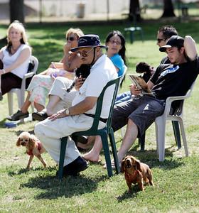 Sepulveda Basin Off-Leash Dog Park