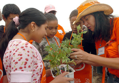 """At Shirley Avenue Elementary School in Reseda, Ca., 5th grade students left to right are Stephanie Castro, 11, Kassandra Turcios, 11, Alexandra Moreno, 11, learn about planting tomato plants in the school's new garden by Home Depot employee, Mari Duarte, on Thursday, May 31, 2007.  Home Depot is hosting their Team Depot Beautification program at the school and is helping creating a """"Literacy Garden"""".  (Tina Burch/Staff Photographer)"""
