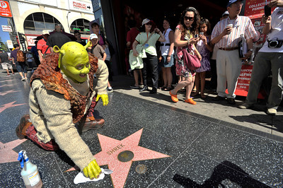 """In anticipation of """"Shrek the Musical"""" opening July 12 at the Pantages Theatre,  actor Eric Petersen, who plays Shrek, showed up in front of Madame Tussauds to visit the Shrek likeness and polish up his star on the Hollywood Walk of Fame. Hollywood, Ca 7-2-2011. (John McCoy/Staff Photographer)"""