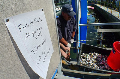 A little humor was posted in the King Harbor Marina on Day 2 of the fish cleanup as volunteers arrived to continue the cleanup. Photo by Brad Graverson 3-9-11