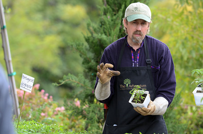 Store manager Marc Hall talks about tomato plants at the LA County Arboretum and Botanical Garden in Arcadia, CA. (Hans Gutknecht/Staff Photographer)