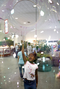 Bubbles. 8-year-old Mikyla McGhee from Ojai successfully executes a giant bubble inside the Youth Expo Building in the Ventura County Fair in Ventura, CA. August 4, 2007. (Ernesto Elizarraraz, Special to the Daily News)