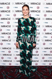 """Actress Drew Barrymore wears PORTS 1961's Pre-Fall 2012 blurred houndstooth silk print dress to the premiere of """"Big Miracle"""" in Washington, DC, on Jan 25, 2012."""