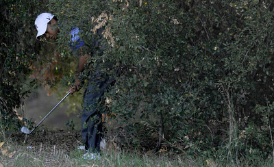 Tiger found himself in the woods after he hooked his tee shot on the 5th hole during the second round of The Chevron World Challenge at Sherwood Country Club. Thousand Oaks, CA 12/02/2011(John McCoy/Staff Photographer)