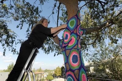 Darlyn Susan Yee works on putting yarn around a tree.Knitters, crocheters and artists from the Los Angeles Yarn Collective are changing the face of a few landmarks at Pierce College. The group is putting a crocheted shroud over the signature Bull sculpture in the center of the school campus, as well as adding yarn to trees and other structures that lead up to the Art Quad in the upper campus. Woodland Hills , CA. 11/05/2011(John McCoy/Staff Photographer)
