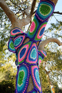 A paisly pattern of yarn is stitched around a tree. Knitters, crocheters and artists from the Los Angeles Yarn Collective are changing the face of a few landmarks at Pierce College. The group is putting a crocheted shroud over the signature Bull sculpture in the center of the school campus, as well as adding yarn to trees and other structures that lead up to the Art Quad in the upper campus. Woodland Hills , CA. 11/05/2011(John McCoy/Staff Photographer)