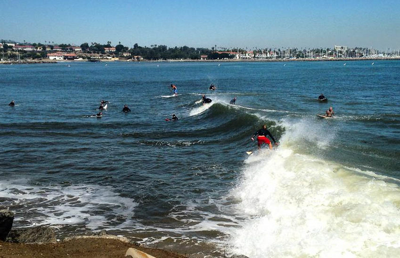 . Surfers take to the inner harbor at Cabrillo Beach in San Pedro Wednesday. Photo by Jennifer Marquez