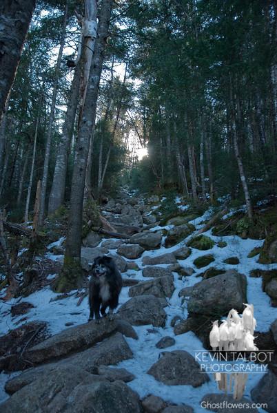 Gale River Trail...<br /> November 12, 2010