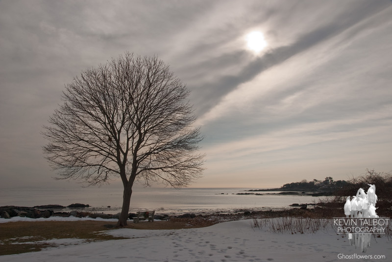 A rift in the Space Time Continuum, seen clearly here over the Atlantic Ocean, has brought Spring to New England on New Years Day... January 1, 2011.