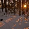 Golden Hour @ KSP... January 14, 2011