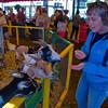 Deerfield Fair... September 26, 2013.