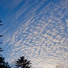 New moon and mackerel sky at sunset... March 16, 2013.